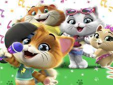 44 de Pisici Memorie cu Carti