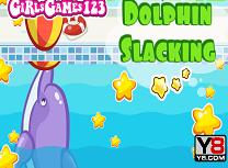 Activitatile Delfinului