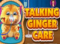 Ai grija de Micutul Ginger