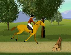 Alearga cu Calul prin Padure