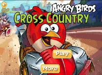 Angry Birds Traverseaza Tara
