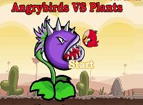 Angry Birds Vs Plante