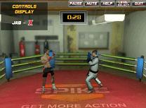 Antrenament de MMA