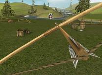 Antrenamentul cu Arcuri 3D