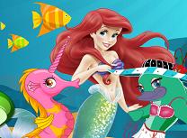 Ariel Concurs Sub Apa