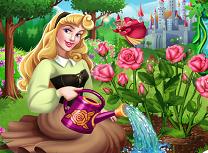Aurora si Gradina de Trandafiri