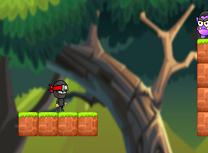 Baiatul Ninja