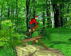 Biciclete in Padure