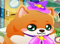 Cainele Pomeranian