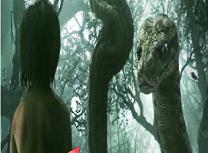 Cartea Junglei 6 Diferente