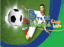 Cupa Mondiala Brazilia