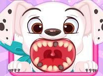 Dentist Pentru Animale
