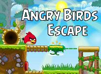 Evadarea Angry Birds