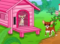 Evadarea Chihuahua
