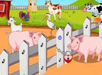 Evadarea Porcilor de la Ferma