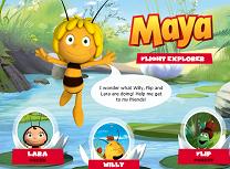 Exploreaza cu Maya