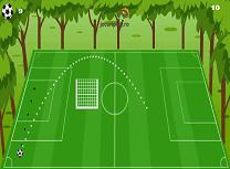 Febra fotbalului