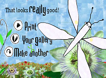 Galeria de Fluturi