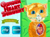 Ginger Operatie la Inima