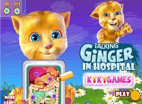 Ginger Operatie la Stomac
