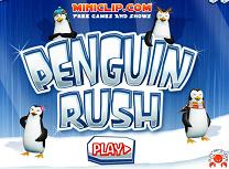Goana Pinguinilor