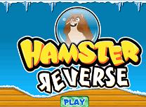 Hamsterul din Bula