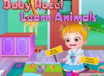 Hazel Invata Animalele