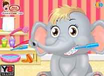 Ingrijeste Elefantul 2