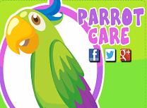 Ingrijeste Papagalul