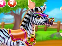 Ai Grija de Zebra