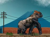 Kong in Oras