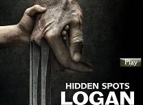 Logan Locuri Ascunse