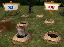 Loveste Hamsterii