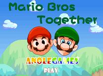 Mario si Luigi de Logica