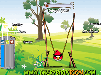 Ouale Angry Birds