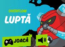 Overflow Lupta