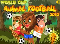 Patrula Junglei Fotbal