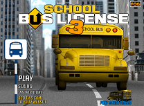 Permis de Conducere pe Autobuz