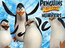 Pinguingii din Madagascar Numere Ascunse