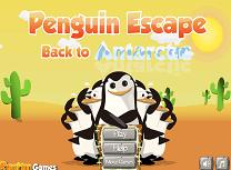 Pinguini Inapoi in Antarctica