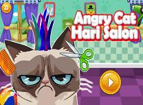 Pisica Furioasa la Salon