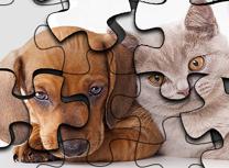 Pisica Vs Caine Puzzle
