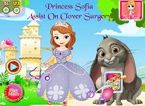 Printesa Sofia la Operatia lui Clover