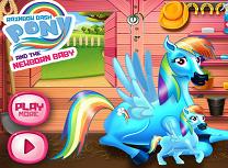 Rainbow Dash si Micul Ponei