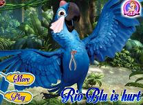 Rio Ranit