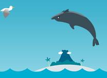 Sarituri cu Delfinul
