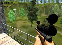 Sniper Profesionist
