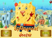 Spongecat la Doctor