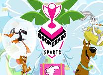 Sporturile Boomerang