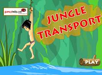 Transport in Jungla